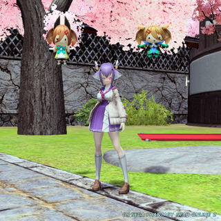 pso20200409_001.png